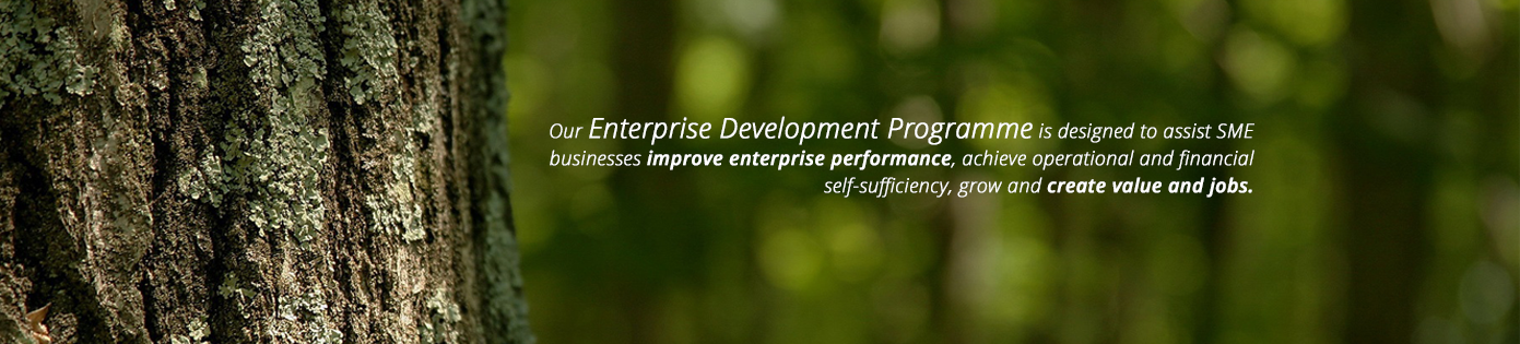 Enterprise Development Program